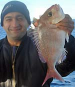 Another bloke with a snapper